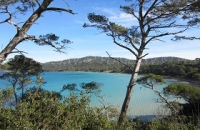Porquerolles: one of the most beautiful islands in France
