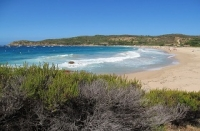 Arone : a wild beach in Corsica with many amenities