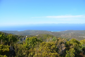 Corsica: how to choose your destination?