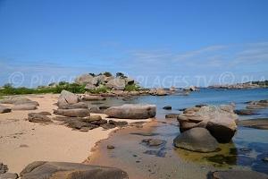 Trégastel : une pépite de la côte de Granit Rose