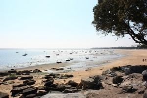 Les îles de la Vendée : Yeu et Noirmoutier