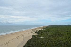 Presqu'île d'Arvert : entre plage de sable et ostréiculture