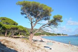 Quel golfe choisir en Corse ?