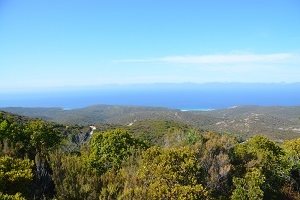 Corsica: how to choose your destination?
