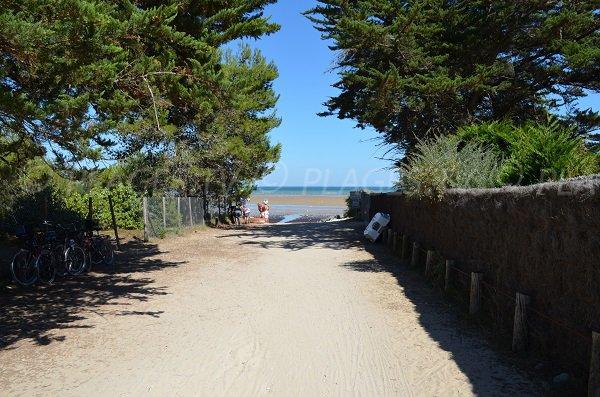 Accès à la plage de l'anse du Fourneau sur l'ile de Ré