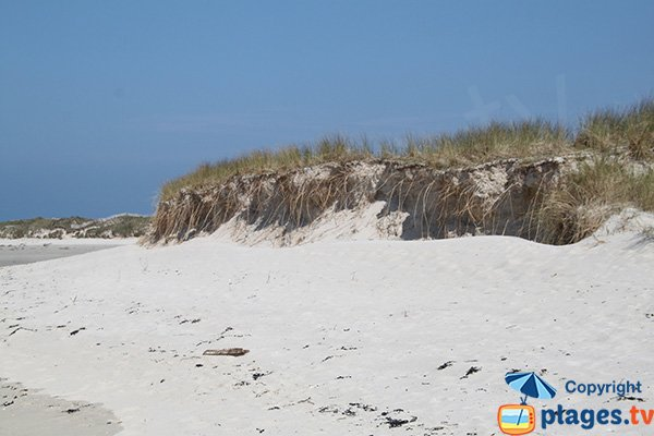 Plage de sable blanc à Plougoulm