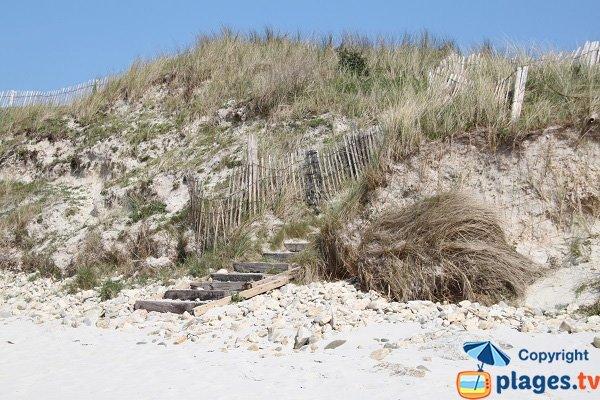Accès aux plage de Guillec par la dune - Plougoulm