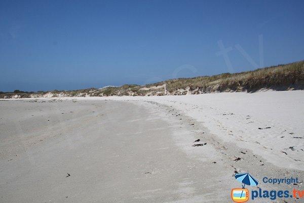 Photo de la plage de Guillec à Plougoulm - Bretagne