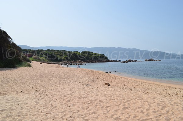 Plage de Medea au sud d'Isolella - côté Sud