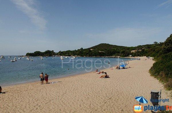 Cala Medea Isolella Corse
