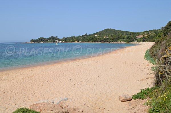 Photo of Medea beach in Pietrosella - Corsica