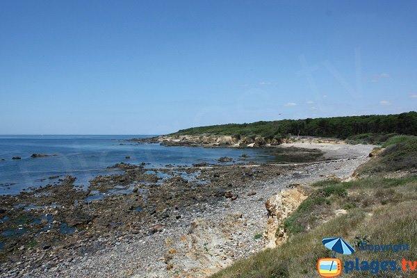 Anse de la Mine - Talmont sur Hilaire