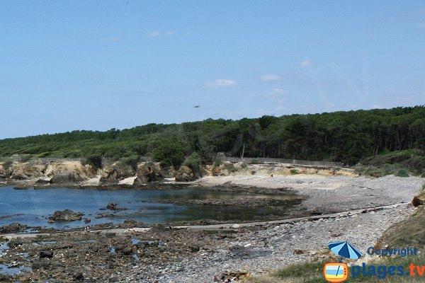 Criques de sable dans l'anse de la Mine - Talmont