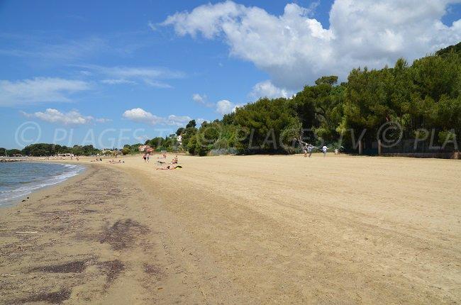 L'Argentière: la plus grande plage de La Londe