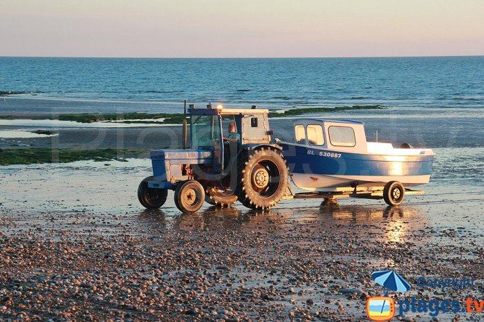 Flobart sur la plage d'Audresselles le soir
