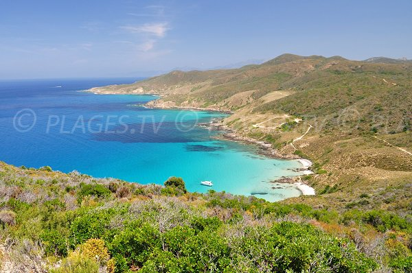 Beach in Acciolu bay in Desert of Agriates - Corsica
