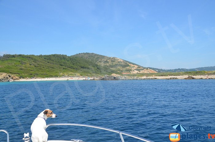 Côté ouest du Cap Taillat