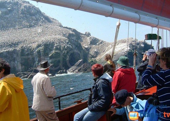 Visit Sept Iles in Perros Guirec in sailing ship