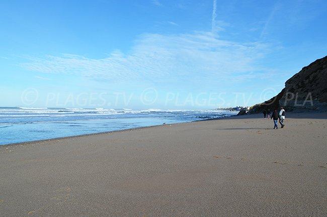 Vue sur Biarritz depuis la plage d'Erretegia