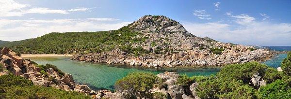 Environnement de la Cala d'Agulia en Corse