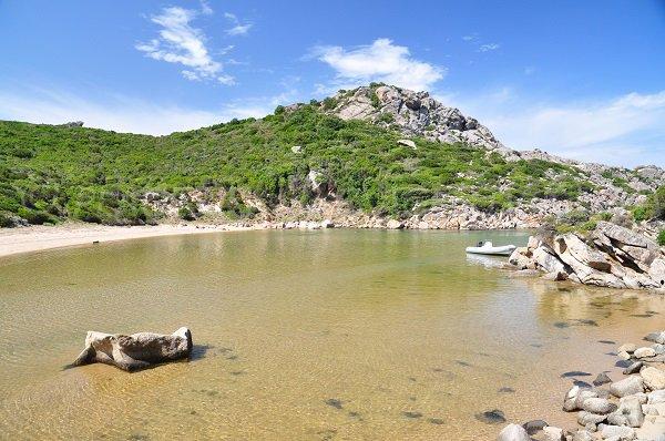 Beach of cala d'Agulia in Corsica