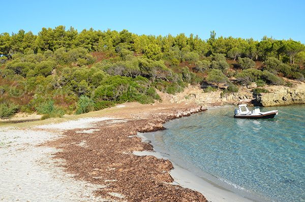 Alga Putrica beach in Corsica (desert of Agriates)