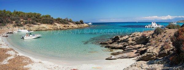 Cala Alga Putrica in Corsica