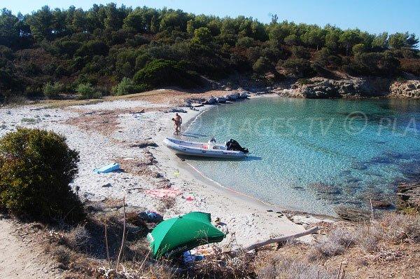 Cala Alga Putrica in Ghignu in desert of Agriates - Corsica