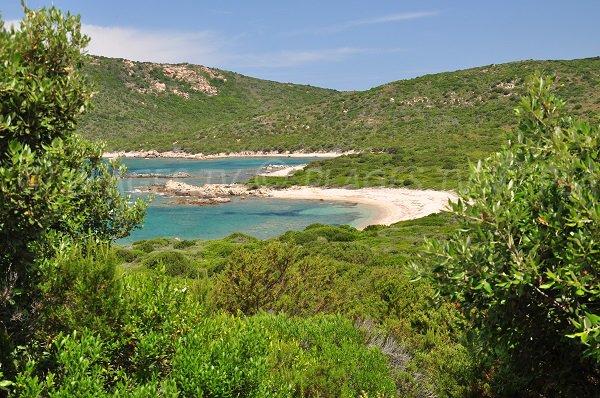 Photo des plages dans la Cala d'Arana en Corse (Sartène)