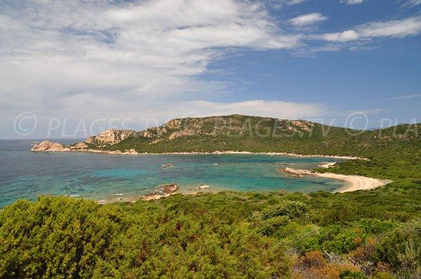 Photo de la Cala d'Arana en Corse