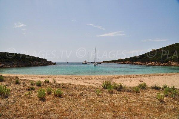 Cala di Conca - Sartène - Corsica