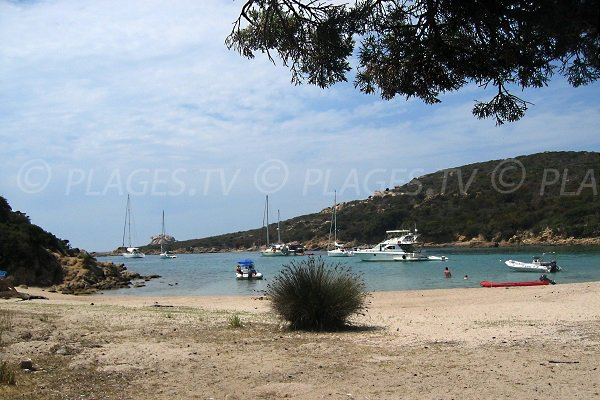 Photo of the cala of Conca in Sartène with boats