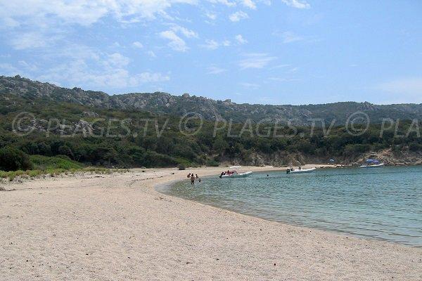 Confidential beach in  Sartène - Calanque of Conca