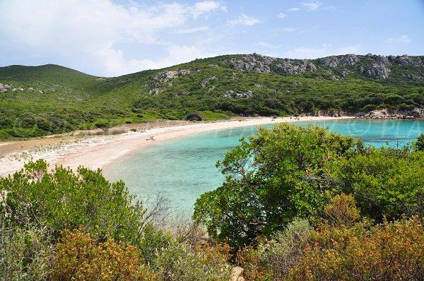 Foto della spiaggia Cala de Conca di Sartène - Corsica