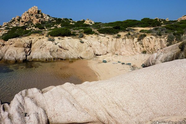 Crique de sable au nord du Capo di Feno - Bonifacio