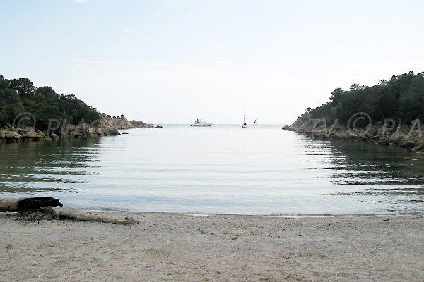 Foto della spiaggia Cala Longa a Sartène - Corsica