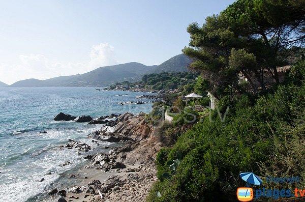 Costa - spiaggia della Calanque - Ajaccio