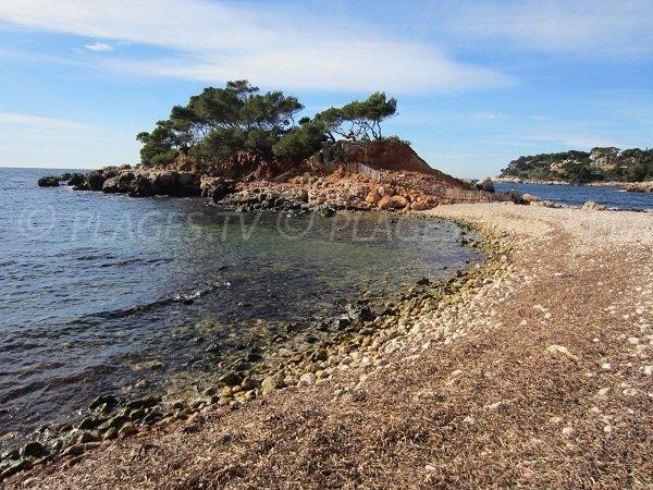 Peninsula on the Capelan calanque - Bandol