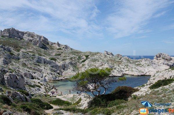 Calanque de la Crine à Frioul