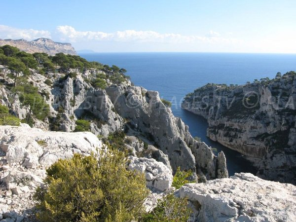 Photo of Calanque En-Vau in Marseille - France