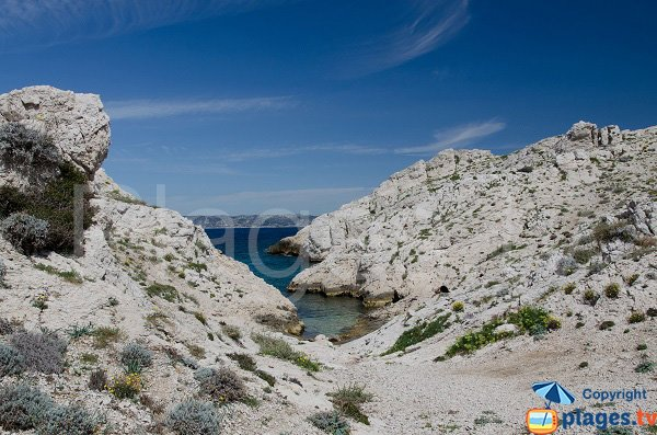 Calanque of Escondelle in Frioul - Marseille
