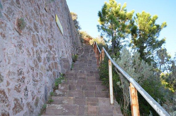 Escaliers pour accéder à la calanque de Maubois