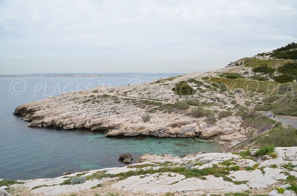 Environment  of Calanque du Mauvais Pas in Marseille