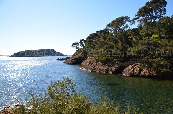Beach of Petit Mugel in La Ciotat