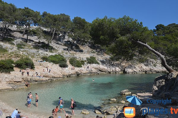Calanque of Port Pin in Cassis