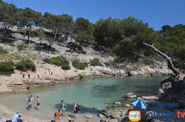 Calanque di Port Pin a Cassis - Francia