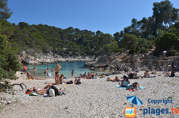 Photo de la plage dans la calanque de Port Pin à Cassis Marseille