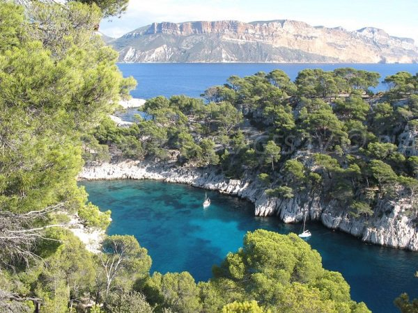 Calanque of Port Pin in Marseille in France