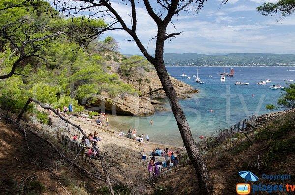 Calanque de Seynerolles sur l'ile Verte (13)