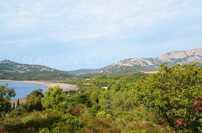 Baia di Crovani - Corsica - Calvi e Galéria